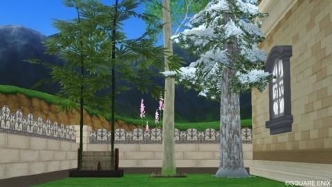 風流な竹・白樺の木・雪原のモミの木