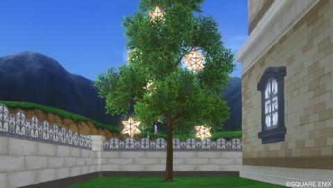 星型ランタンの木
