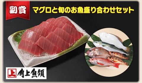 角上魚類「マグロと旬のお魚盛り合わせセット」